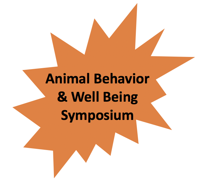 Animal Behavior Recap