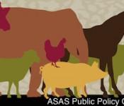 ASAS_Public-Policy-175x150