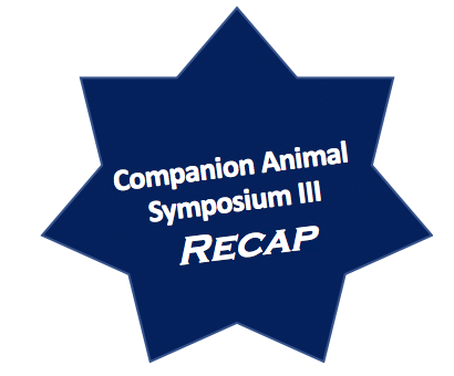 companion animal III
