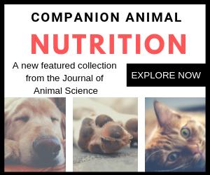 Companion animal pic