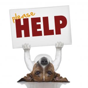 please-help-300x300
