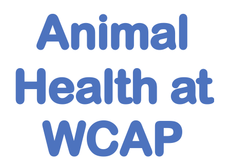 animal health at wcap