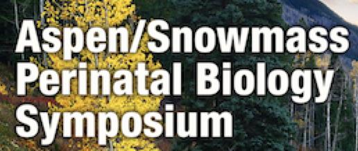 Perinatal Symposium