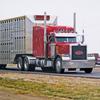 TS livestock trailer