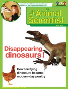 The May issue of Jr. Animal Scientist focused on dinosaurs (and poultry science!)