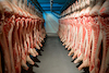 meat_packing