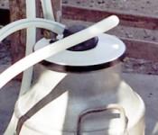 milking_unit