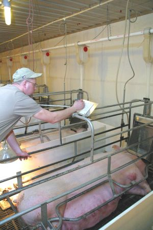 """Good recordkeeping was called the """"cornerstone"""" of animal health."""