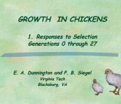 NAL4392_growthinchickens_1121