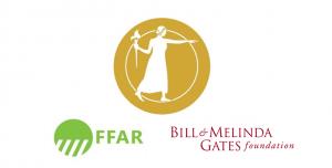nas award logos