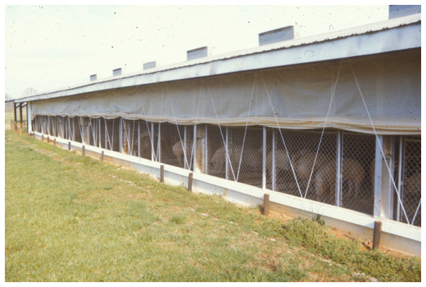 curtain-sided housing