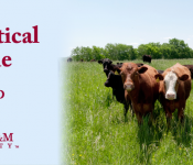 Pharm Cattle
