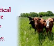 Pharm Cattle (2)
