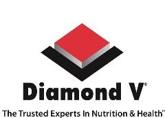 DiamondV_logo_Vert