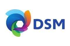 DSM-logo copy
