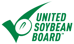 USB Logo copy