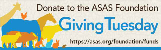GivingTuesday2017Email