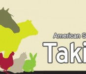 taking-stock-new-banner